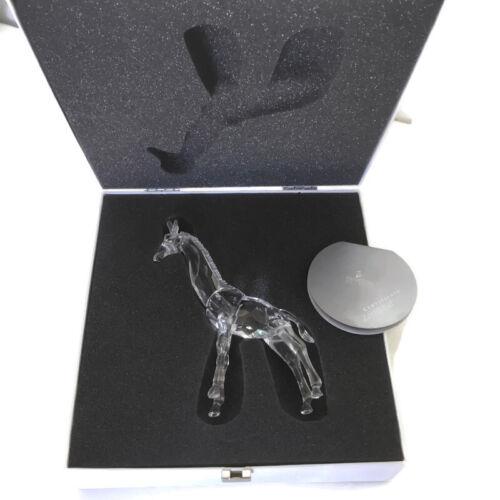 Authentic Swarovski Crystal Baby Giraffe MIB with COA 7603 NR 000 002 Retired