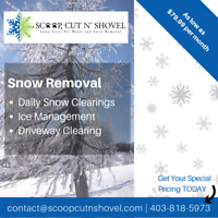 Reliable Snow Removal in Calgary