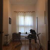 Looking for a roomate, newly renovated 6 1/2 apartment (Plateau)