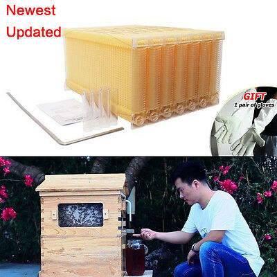 7Pcs Auto Honey Beehive Frame Beekeeping Kit Bee Hive Frame Harvesting US SHIP