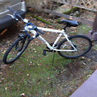 A brand-new bike for sale