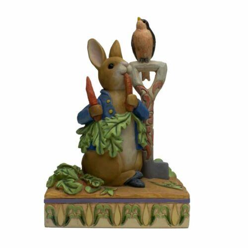 Beatrix Potter By Jim Shore Peter Rabbit In Garden Figurine - Enesco NIB