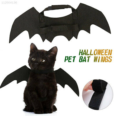70D7 Schwarz  Halloween Suppiles Outfit Wings Kostüm Katze Kostüm Kreativ - Kreativ Hunde Kostüm
