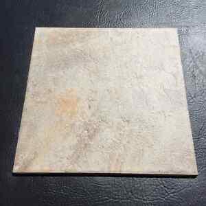 """12"""" x 12"""" ceramic tile"""