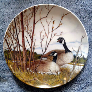 """""""Nesting"""" Collector Plate"""