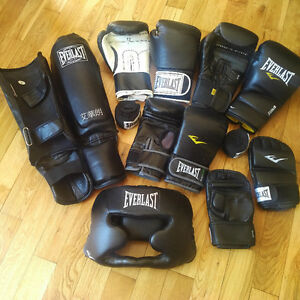 MMA and Boxing Kit (Everlast)