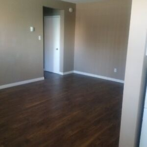 New Renovated 1 Bedroom with Free parking & Internet & much more