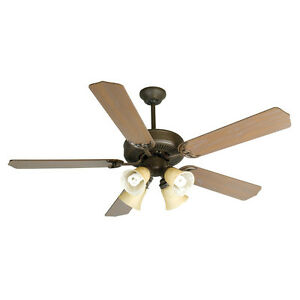 Professional Assembly and Installation of Ceiling Fans