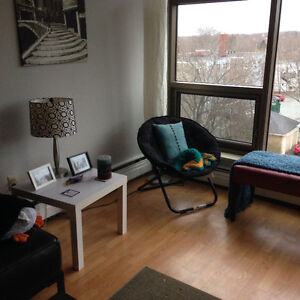 Beautiful One Bedroom Right Across from Dal!