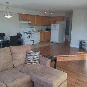 BRIGHT/SPACIOUS 1 bedroom Clayton Park for June 1st Pet-Friendly