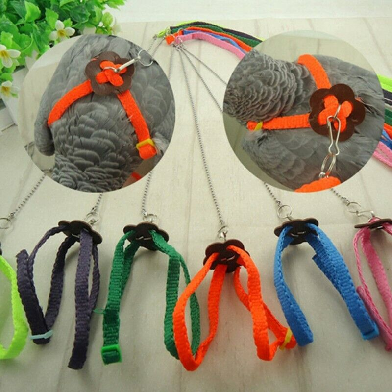 Bird Harness And Leash For Parrot Cockatiel Parakeet Conure Macaw Anti Bite Rope