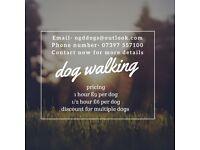 Dog walking service based in clevedon