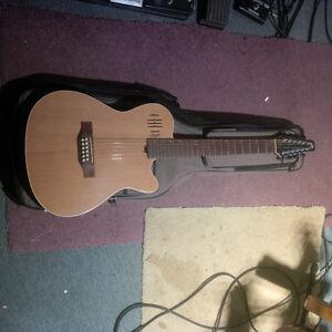 Godin and Seagull guitars and Mandolin