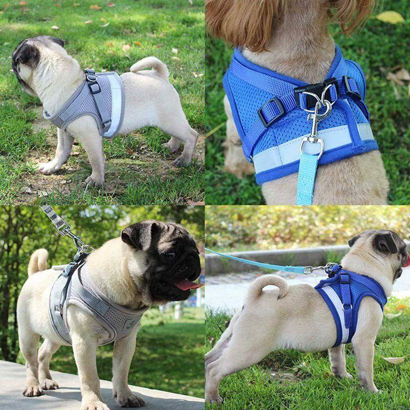 Breathable Small Dog harness Leash SET Pet Cat Mesh Vest Col
