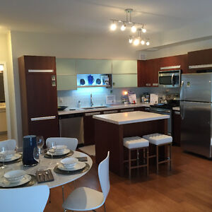 High end executive fully furnished with pool/hot tub