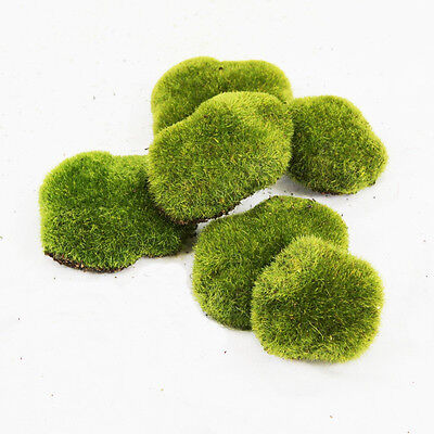 - ARTIFICIAL GREENERY- TERRARIUM/VIVARIUM/VASES/FAIRY GARDEN (Moss Rocks)