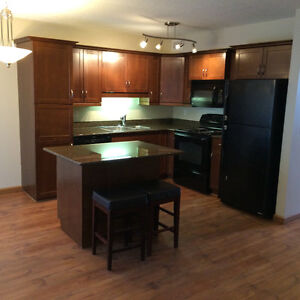 3bedroom townhouse in Stonebride from Aril1 or May 1