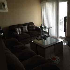 Need roommate for Cozy apartment!