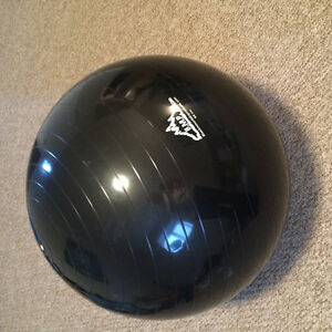 65cm Exercise Ball with Pump - Moving Sale!!!!