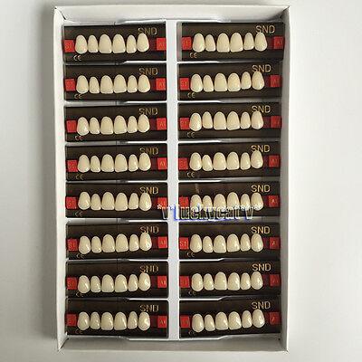 16ps A1 Anterior S1 Dental Acrylic Teeth Synthetic Resin False Denture