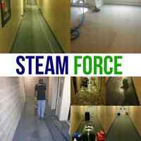 DEEP STEAM CLEANING.  3 rooms + hall = $99
