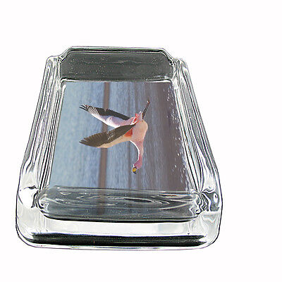 "Flamingo Glass Ashtray D5 4""x3"" Pink Plummage Tropical Exotic Bird Aviary"