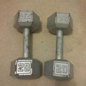 15 and 20 lbs weight set- $10 each