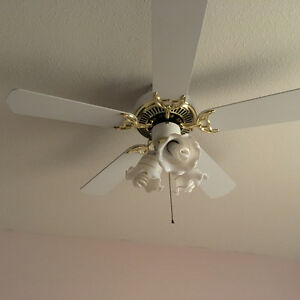 ceiling fan with light and bulbs