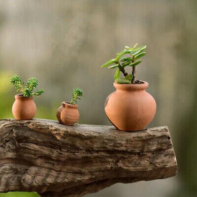 2x Terra-cotta Flowers Pot Succulent Holder Nursery Mini Pots For Home (Mini Terra Cotta)