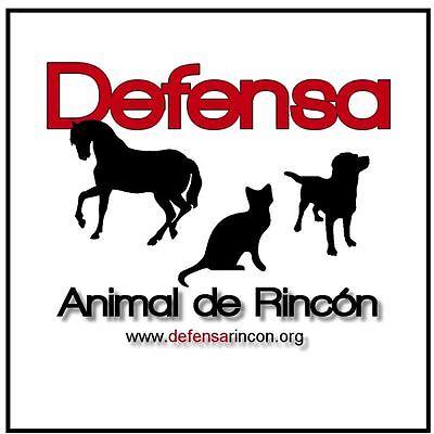 Defensa Animal de Rincon