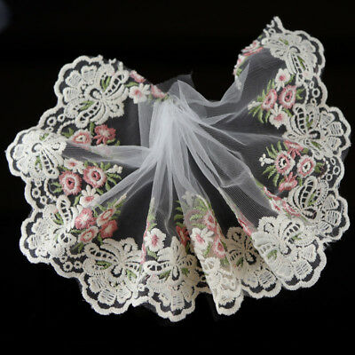 Lace Decorations (2Yds Floral Embroidered Tulle Lace Trim Dress Costume Home DIY Decor)