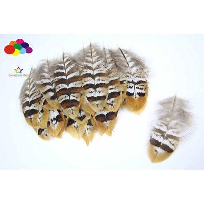 Natural Pheasant Feather Brown Yellow Flake 2-4in/5-10cm 10-100 Pcs Diy Carnival