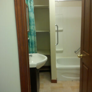 1BR Accessible Apt in Campbell House