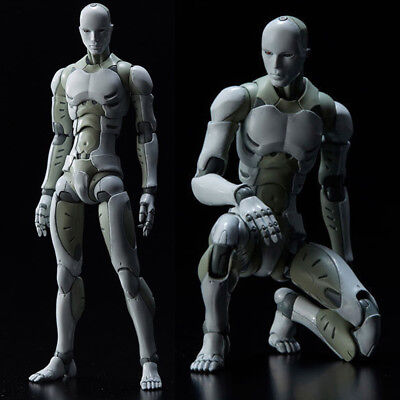 Heavy Industries Synthetic Human He Body Action Figure Figurine 1 6 Scale Dm