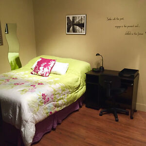 Studio with bedroom available May 1st