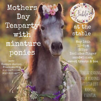 Mother's Day Teas Party with Miniature Ponies