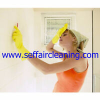 Windows Cleaning Organisation,Moving In/Out Cleaning Lady  Femme