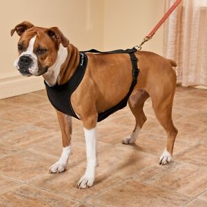 Kumfy Tailz - heating and cooling vests and coats for your dog!