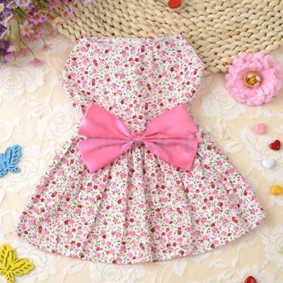 Hund Haustier Katze Welpen Kleid Kleidung Kostüm Blumenmuster Kleid Rock