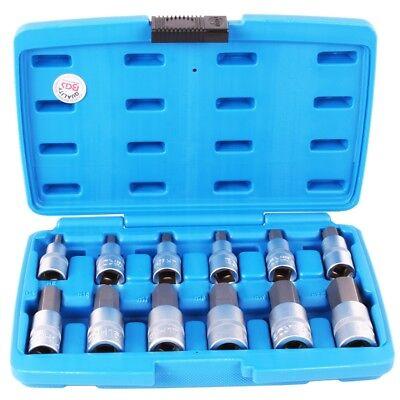 BGS Innensechskant Steckschlüssel Satz 1/2 Sechskant Nüsse für Inbus Schrauben Inbusschlüssel 5mm