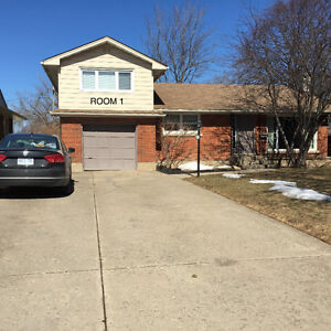 house for rent-between Brock and Pen