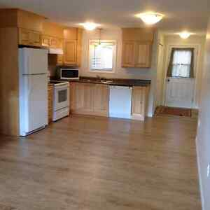 Above Ground Basement Apartment for Rent