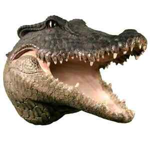 Hanging Wall Mounted Alligator Skull Head Mount - AWESOME !!!