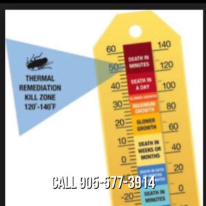 Heat Kills Bed Bugs and Bed Bug Eggs