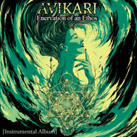 Progressive Metal project AVIKARI looking for committed Drummer