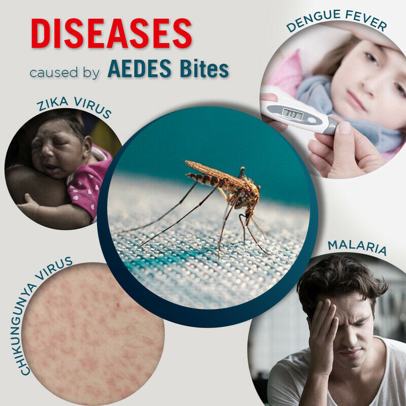 Eco-Friendly  UV Mosquito Flies Eliminator   Wide Range   Save Lives From Aedes
