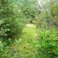 Cabin Land Bay Bulls Track Road