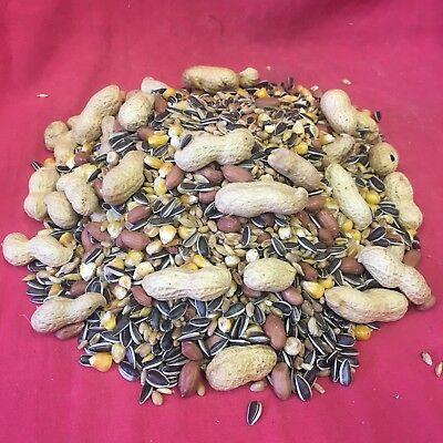 Squirrel Food Mix Chipmunk Wild Bird 600g Garden Bird Sunflower Monkey Nuts Corn