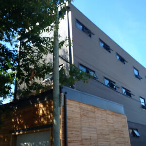 Contemporary Cool 3 bedroom Apartment- Brand New, Bloor/Bathurst