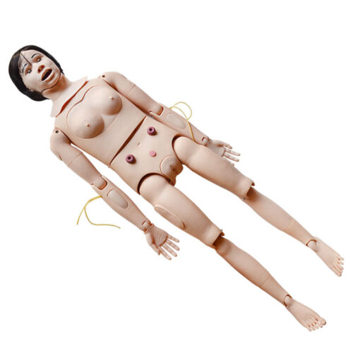 Patient Care Manikin Teaching Nursing Model Mannequin Male Female Changeable